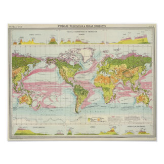 World vegetation & ocean currents Map Poster