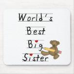 World's Best Big Sister