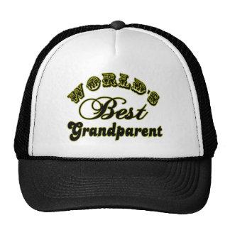 World's Best Grandparent Hat