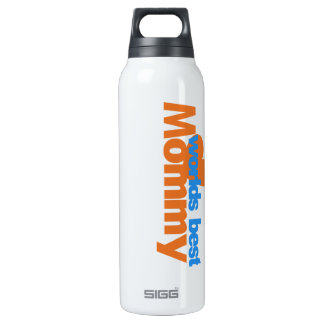 Worlds Best Mom 16 Oz Insulated SIGG Thermos Water Bottle