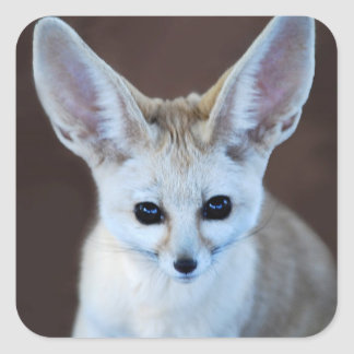 Worlds Cutest Fennec Fox Square Sticker