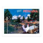World's Egg Basket Poster Post Card
