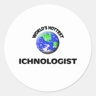 World's Hottest Ichnologist Round Sticker