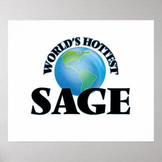 World's Hottest Sage Print