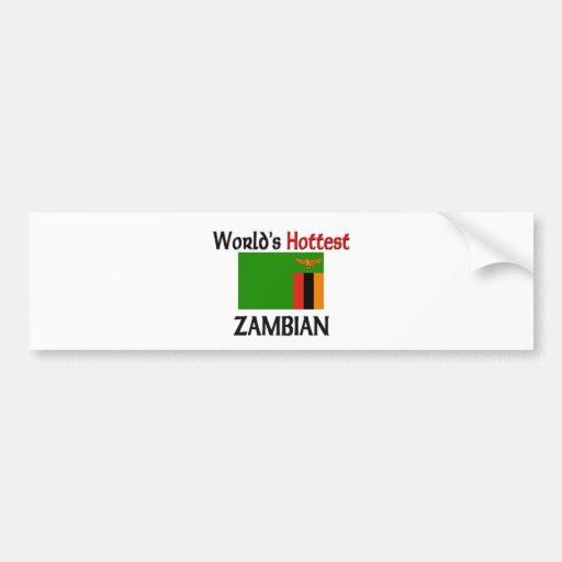World's Hottest Zambian Bumper Sticker