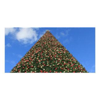 World's Largest Christmas Tree Customized Photo Card