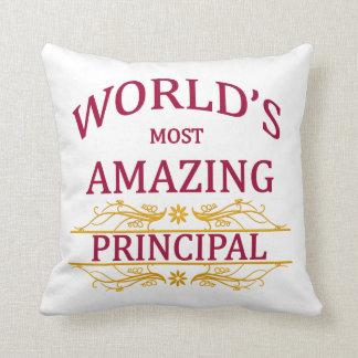 World's Most Amazing Principal Cushion