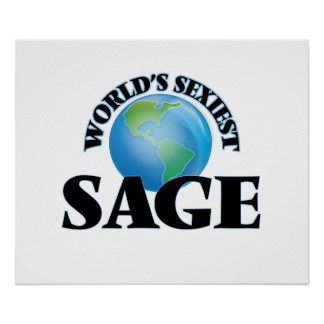 World's Sexiest Sage Poster