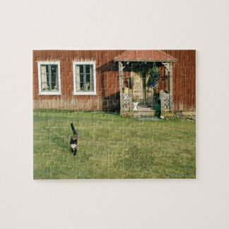 Worn red house with a cat on the lawn. puzzle