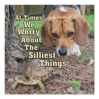 Worried Beagle Dog & Turtle