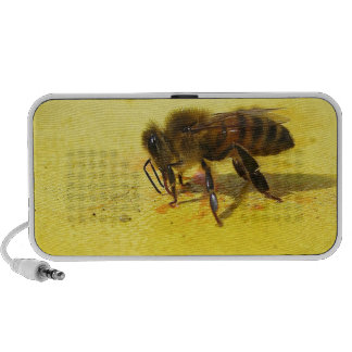 Would You BEE Mine...? iPhone Speaker