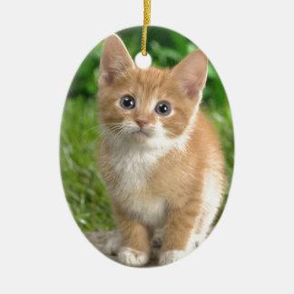 Wow Cat! Christmas Tree Ornament