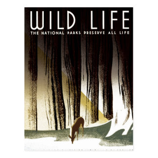 "WPA - ""Wild Life"" Postcard"