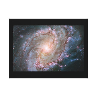 Wrapped Canvas (Gloss) Southern Pin Wheel Galaxy