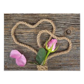 Wrapped Rose Bud Art Photo