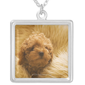 Wrapped up Poodle Square Pendant Necklace