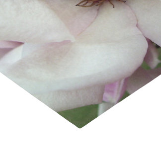 Wrapping Tissue - Saucer Magnolia Bloom Tissue Paper