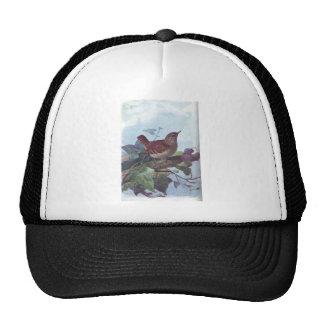 wren mesh hats