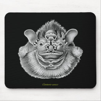 Wrinkle-faced Bat Mouse Mat