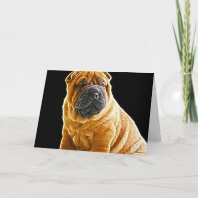 Related Pictures yazmin the bull pei puppy at 7 weeks old yazmin is a ...