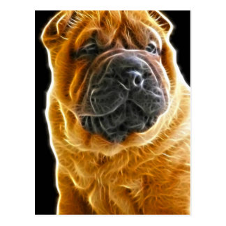 Wrinkles The Chinese Shar Pei Puppy Dog Post Cards