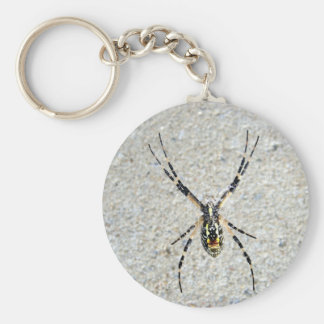 Writing Spider Keychain