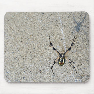Writing Spider Sees It's Shadow Mousepad