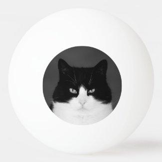 Wu's PingPong Ball