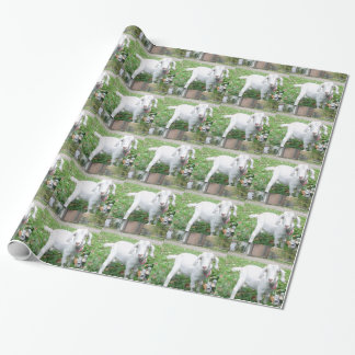 WV Scenic Wrapping Paper Photo 5