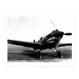 WWII Flying Tigers Curtiss P-40 Fighter Plane Postcard