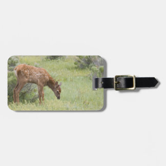 WY, Yellowstone National Park, Elk calf in Luggage Tag