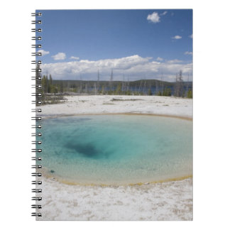 WY, Yellowstone National Park, West Thumb Geyser Notebooks