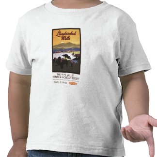 Wye Valley Resort British Rail Poster Tee Shirts