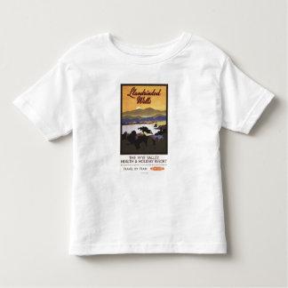 Wye Valley Resort British Rail Poster Tee Shirt