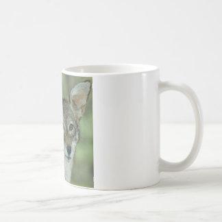 Wyle E Coyote (Beep Beep) Coffee Mugs