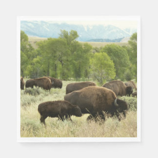 Wyoming Bison Nature Animal Photography Paper Napkin