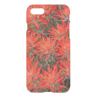 Wyoming, Lincoln County, Desert Paintbrush iPhone 8/7 Case
