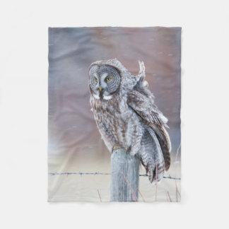 Wyoming, Lincoln County, Great Gray Owl sitting Fleece Blanket