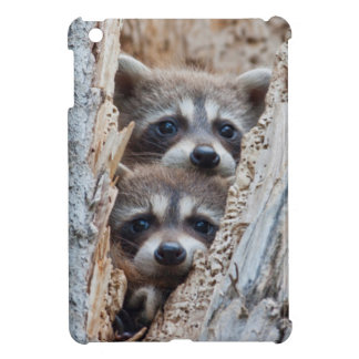 Wyoming, Lincoln County, Raccoon Cover For The iPad Mini