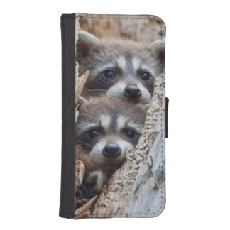 Wyoming, Lincoln County, Raccoon iPhone SE/5/5s Wallet Case