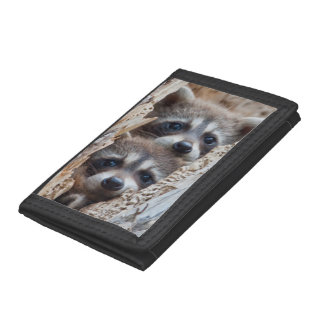 Wyoming, Lincoln County, Raccoon Tri-fold Wallets
