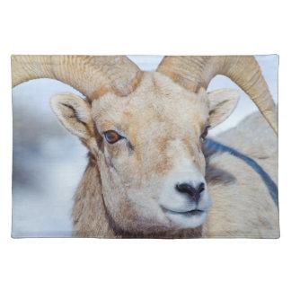 Wyoming, National Elk Refuge, Bighorn Sheep Ram Placemat