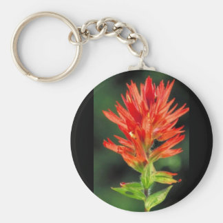 Wyoming Paintbrush Key Ring