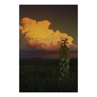 Wyoming Poster