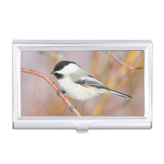 Wyoming, Sublette County, Black-capped Chickadee Business Card Holder