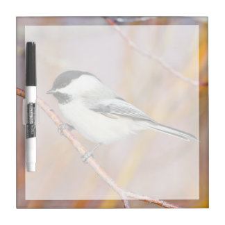 Wyoming, Sublette County, Black-capped Chickadee Dry Erase Board