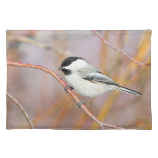 Wyoming, Sublette County, Black-capped Chickadee Placemat