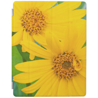 Wyoming, Sublette County, Close-up of two Arrow iPad Cover