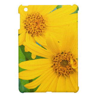 Wyoming, Sublette County, Close-up of two Arrow iPad Mini Cases