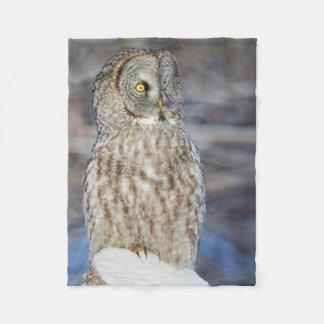 Wyoming, Sublette County, Great Gray Owl 1 Fleece Blanket